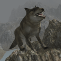 Real Wolf Simulator 1.7