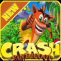 Crash Bandicoot Runners Adventure 1.0.0