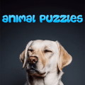 Animals Game 1.0