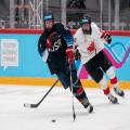 hockey game 1.0