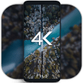4K Wallpapers - Auto Wallpaper Changer 1.4.2