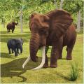 Elephant Simulator: Wild Animal Family Games 1.04c