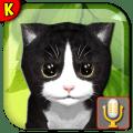 Talking Kittens your pet 0.4.5