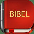 German Bible 7.3.4