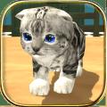 com.hgamesart.catsimulator 1.033