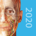 Human Anatomy Atlas 2020:Complete 3D Human Body 2020.0.73