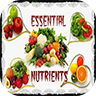 Essential Nutrients 1.2.0