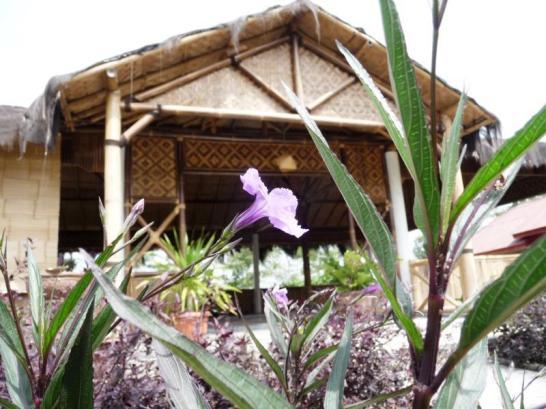 Sendangsari Bamboo Homestay1