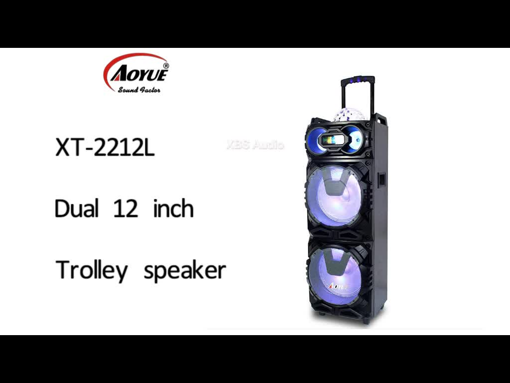 Aoyue Hot Dual 12 Inch 100w Stage Pa System Wireless Party