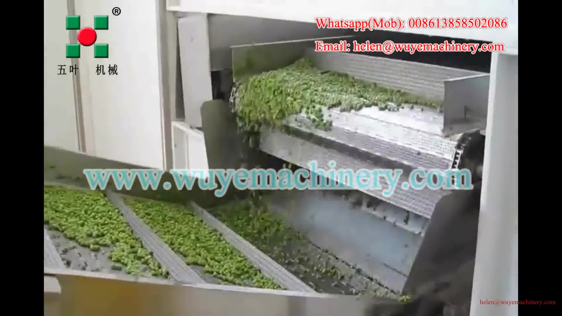 Frozen Fruits And Vegetable Processing Iqf Freezing
