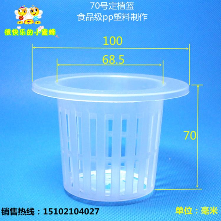 70號定植杯藍10只 無土栽培 水培水耕蔬菜 種植籃杯圓形 固根器