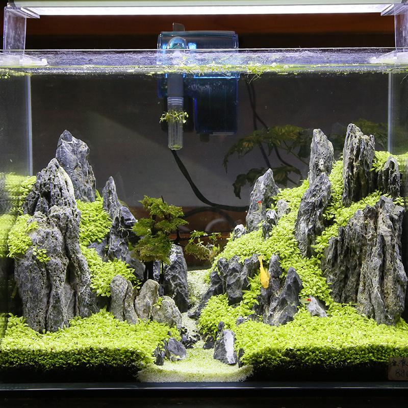魚缸造景用什么石頭好