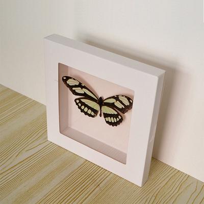 立體相框 紙質 A4畫框 永生花標本捲紙畫框小學幼兒園DIY手工開窗