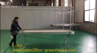 Rolling Bench And Rolling Table Ebb And Flow Greenhouse ...
