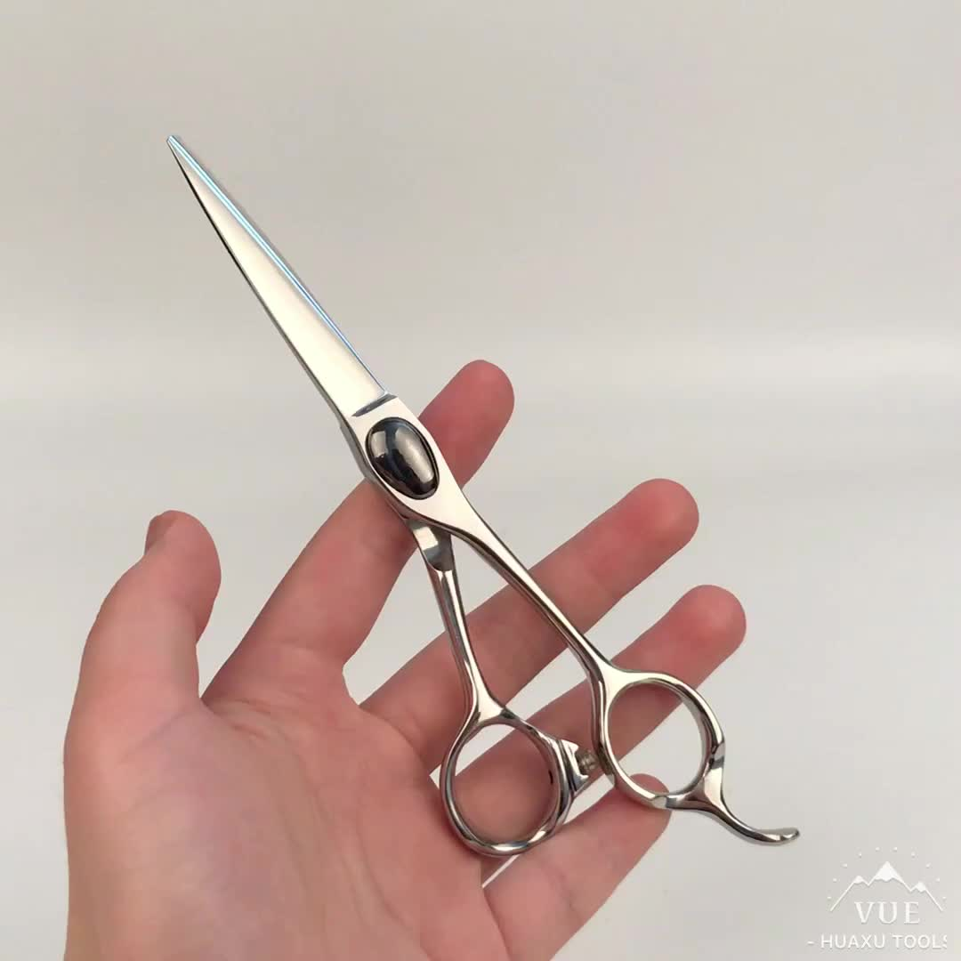 Professional Hairdressing Scissors Hair Cutting Shears For
