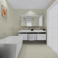 Kitchen Tile Floor Black Sink 厨房墙砖优惠券91优惠返 返利 购物 淘宝 天猫优惠卷 厨房瓷砖卫生间瓷砖地板水晶玉瓷砖釉面砖内墙砖300x600 6302