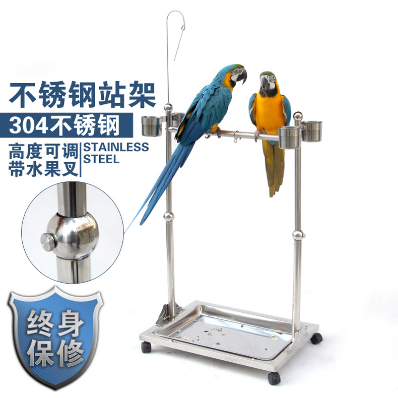 travel play stand avian