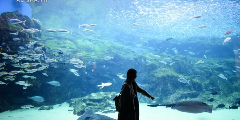 長崎。九十九島|搭乘海盜遊覽船征服百座小島 九十九島水族館 挖珍珠體驗