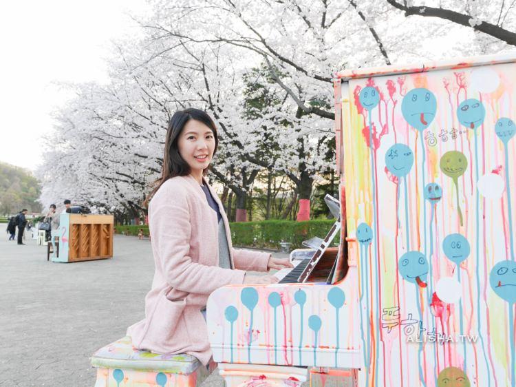 京畿道|首爾樂園Seoul Land。櫻花林下彈鋼琴,偶像劇般的夢幻場景
