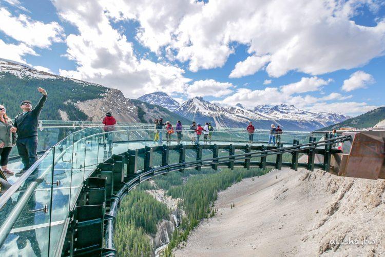 加拿大・落磯山脈|Glacier Skywalk 天空步道・不一樣的角度看世界