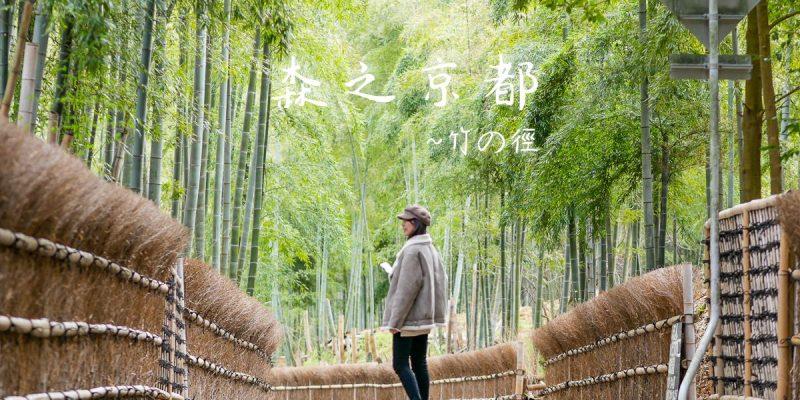 森之京都·向日|竹之徑.竹林公園,嵐山之外的另一處秘境