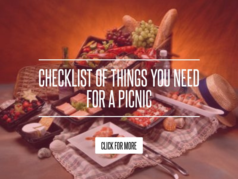 Checklist of Things You Need for a Picnic Lifestyle