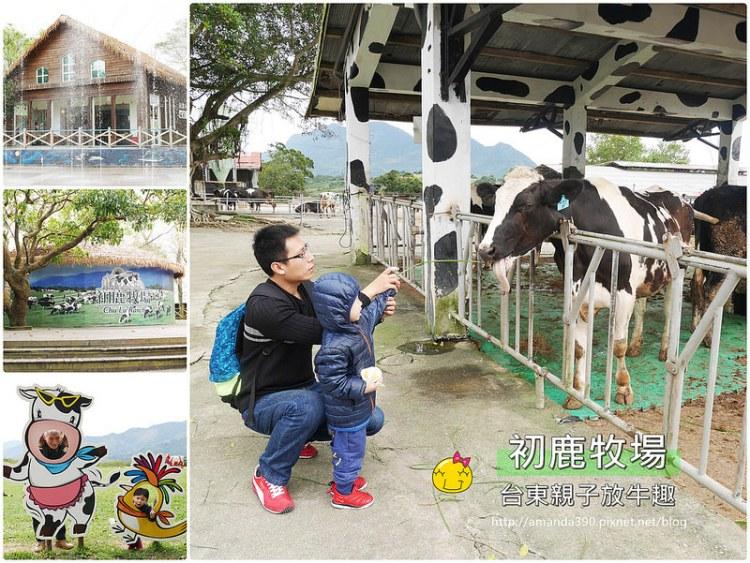 初鹿牧場。與荷蘭乳牛的近距離接觸。親子台東踩點趣!台東景點|鮮乳