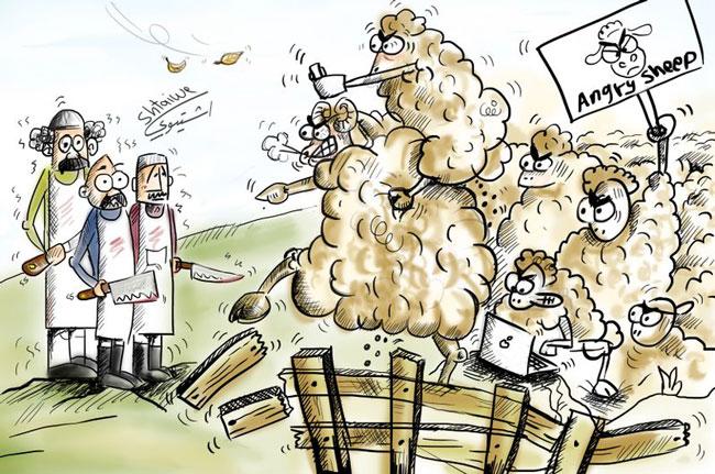 Πρόβατα-αγριεμένα
