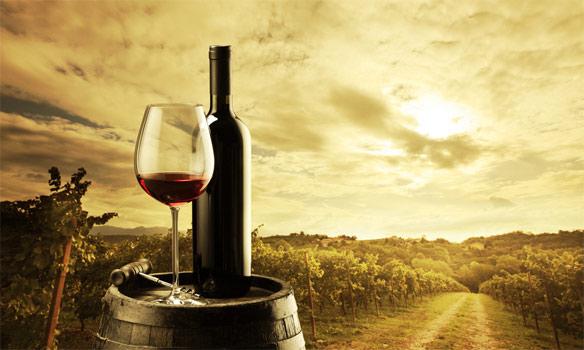 Κρασί-2013-2014