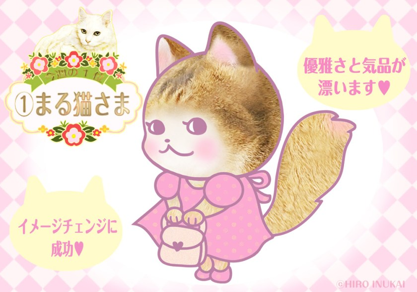 Fortune-telling 2021 Cat-sama Fortune-telling Week Fortune Fortune Good luck Love luck