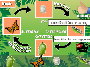 Android Insects Life Cycle Free Screen 5