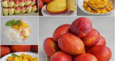 [宅配]枋山愛文芒果專賣「愛在芒果食」-價格實在外銷等級愛文芒果