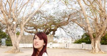 【變髮】超顯白個性紫紅髮~ 離白紙人更進一步。A'mour Hair Salon