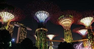 【新加坡自由行】5天4夜新加坡自由行~濱海灣花園。猶如電影阿凡達場景!科幻不思議的絕美超級樹