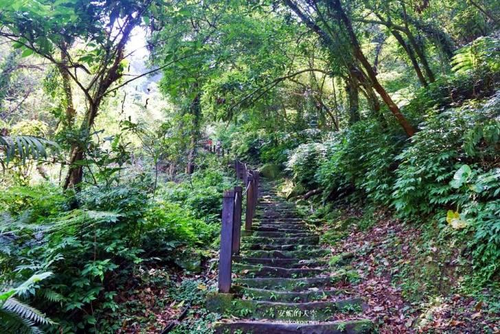 20190530225444 17 - [新店景點 銀河洞越嶺步道 ]全台北最仙氣的步道 來一場與飛瀑共舞的山林之旅