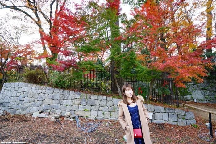 【京阪自由行】京都賞楓景點推薦 ♥ 北野天滿宮 楓葉超美