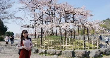 【京阪自由行】宇治景點 宇治橋、宇治公園 ♥ 宇治散步一定要去