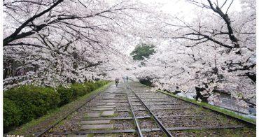 【京阪自由行】賞櫻推薦景點 蹴上鐵道 南禪寺 ♥ 好美好美的櫻花林與櫻花隧道