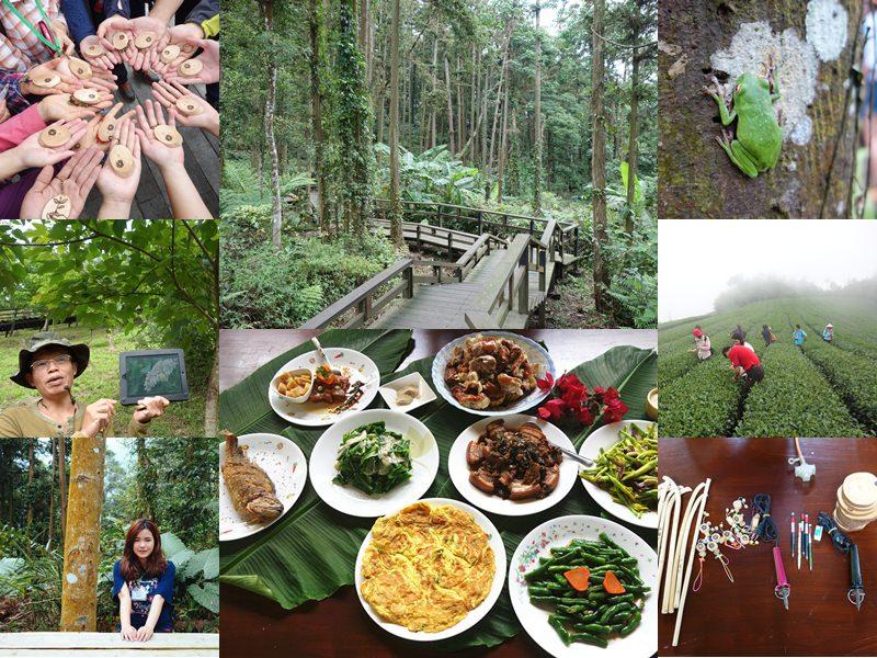 嘉義阿里山國家風景區   土匪守護山林生態體驗,龍美景觀步道、山林午餐饗宴、茶園秘境,寓教於樂一日遊。