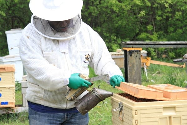 A man holds up a metal smoker to a beekeeper's box