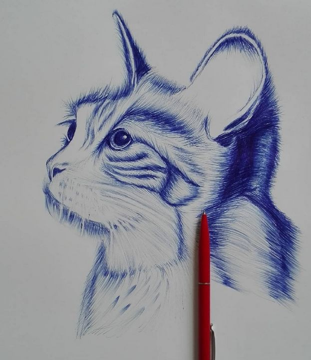 Cat Sketch With Pen Original Bilal Durani Drawings Illustration Animals Birds Fish Cats Kittens Other Cats Kittens Artpal