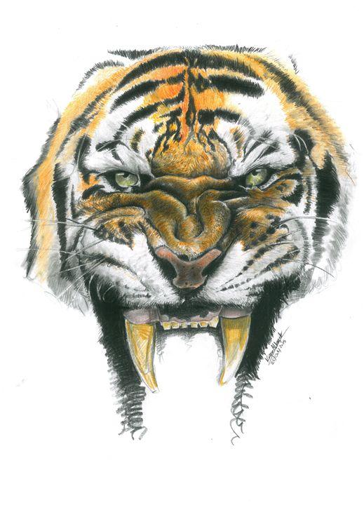Color Tiger Face Drawing : color, tiger, drawing, Tiger, KAZAGOVIC, Drawings, Illustration,, Animals,, Birds,, Fish,, Cats,, Tigers, ArtPal