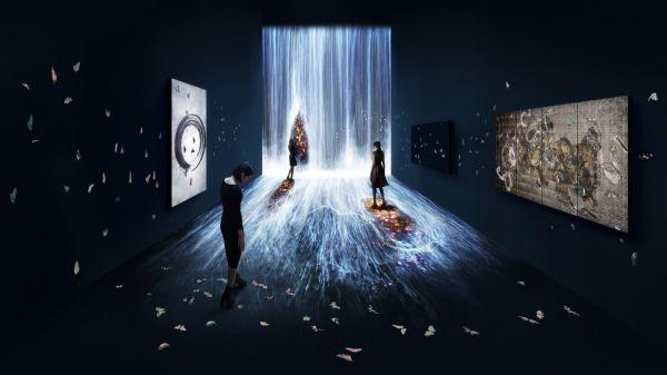 Digital Interactive Art Installations