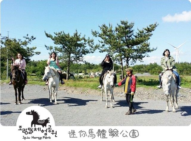 韓國 ▌濟州島自由行 迷你馬體驗公園/加時里小馬體驗公園 조랑말체험공원