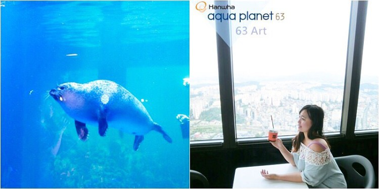 韓國首爾 ▌汝矣渡口站(527):63大廈展望台+63海洋世界 63빌딩/아쿠아플라넷 值得去