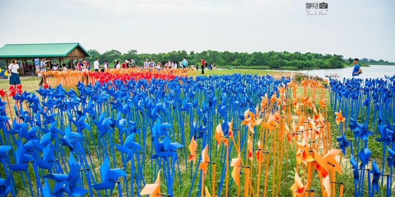  台南景點 德元埤荷蘭村,7000支彩色小風車迎接風車節到來