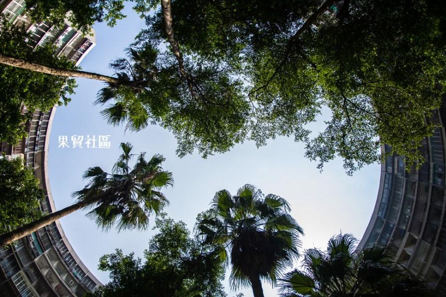  高雄景點 果貿社區,IG打卡熱門景點,類窩居特色建築具有高雄小香港之稱