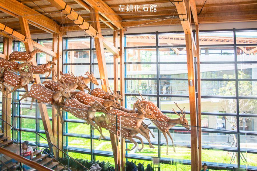  台南景點 左鎮化石園區,全台第一座以化石為主題的博物館,一起穿越回到幾千萬年前的時空