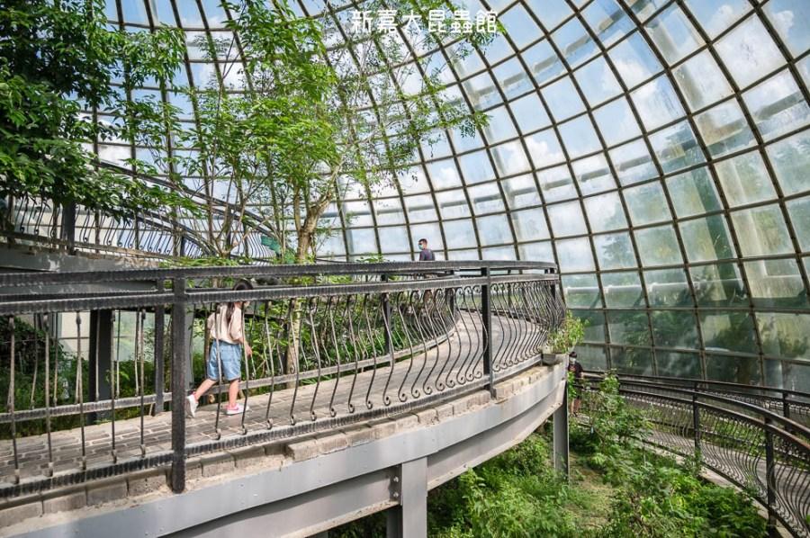  嘉義景點 新嘉大昆蟲館,超好拍夢幻蝴蝶溫室花園和全台唯一旋轉彩蝶柱
