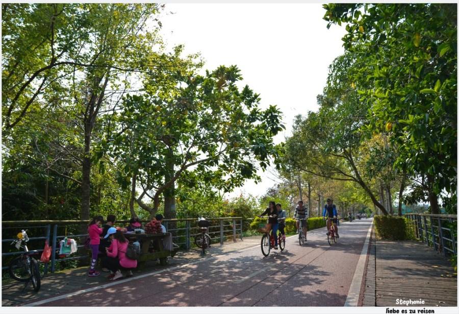  台中‧后里 綠色隧道后豐鐵馬道*一起來騎腳踏車吧
